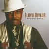Floydtaylor_youstillgotit