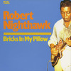 Robertnighthawk_bricksinmypillow