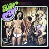 Blowfly_disco