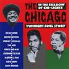 Chicagotwinightstory